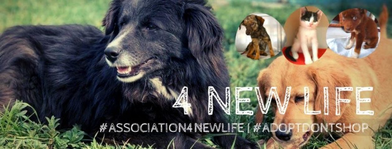 4newlife-Association de Protection et de défense animale. Loi de 1908